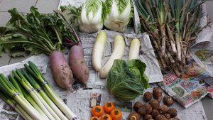 大量の野菜!!