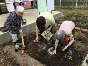 枝豆も植えましょう!